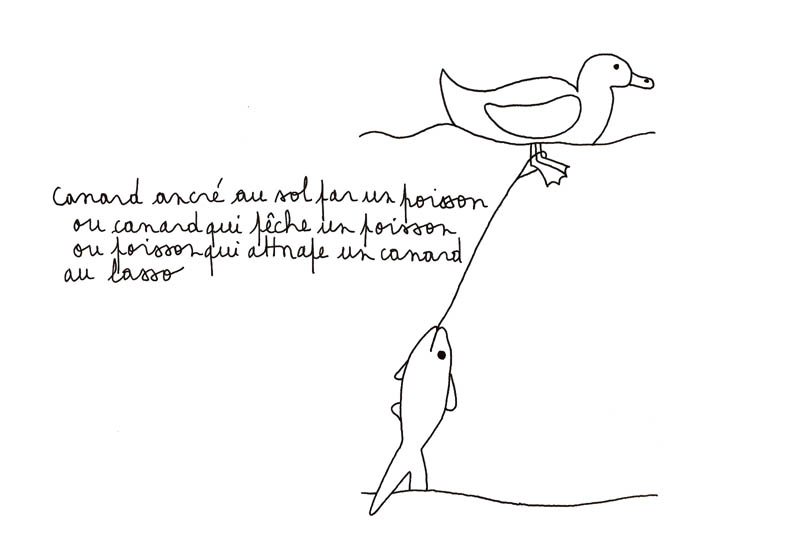 canard et poisson