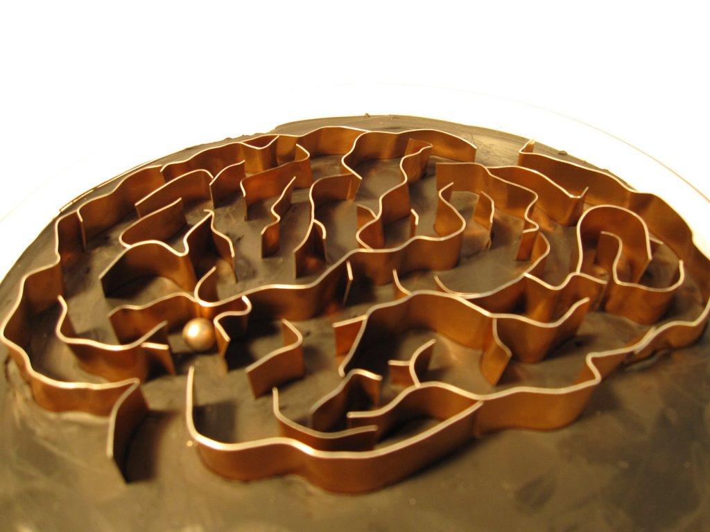 jeu-labyrinthe cerveau 2